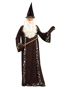 Morris Costumes FM59474 Wizard Hat And Robe at GotApparel
