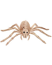 Halloween Costumes SE18215 Spider Skeleton at GotApparel