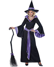 California Costumes 00853 Women Incantasia, The Glamour Witch / Adult at GotApparel