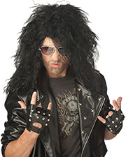 California Costumes 70562  HEAVY METAL ROCKER WIG at GotApparel