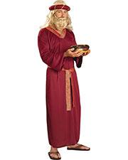Halloween Costumes FM60112 Men Wiseman Adult at GotApparel