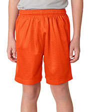 "A4 NB5301 Boys Tricot Lined 6"" Mesh Shorts at GotApparel"