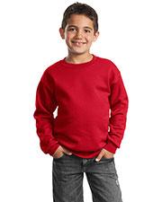 Port & Company PC90Y Boys Crewneck Sweatshirt at GotApparel