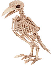 Halloween Costumes SE18119  SKELETON RAVEN at GotApparel