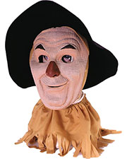 Halloween Costumes TB915 Men Scarecrow at GotApparel